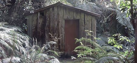 Fairly rustic construction methods were used and local timber. | Beech Hut, Milford Track