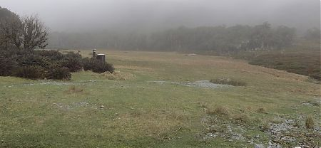 The entrance to the camping area on a misty old day.  | Greenstone Saddle camping area, Greenstone Track