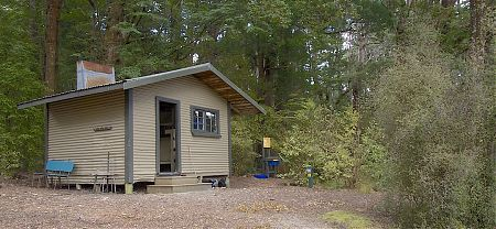 Great setting in red beech forest close to the lake. | Shallow Bay Hut, Kepler Track