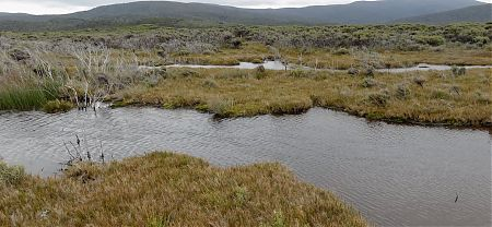 Looks straight forward but my advice is not to use the direct route. | Freshwater Plain, Stewart Island
