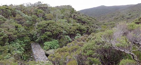 The stone old sluicing dam wall, way out in the middle of not much. | Tin Range route, Stewart Island