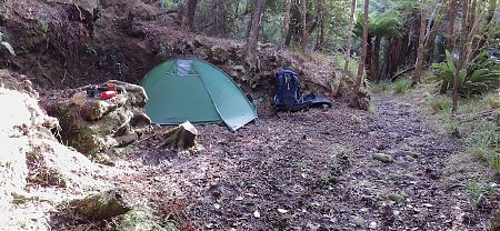 This is about the only spot to pitch a tent, not big.    Diprose Bay campsite, Tin Range, Rakiura National Park, Stewart Island