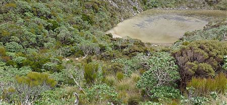 Probably a better campsite at the south end of the lake.   | Mt Allen lake, south side campsite, Tin Range, Rakiura National Park, Stewart Island