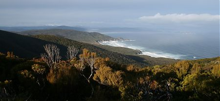 Little Hellfire Beach with Masons Bay, Rakiura National Park, Stewart Island