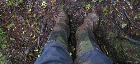 mud, better to have decent gaiters and overtrou. Rakiura National Park, Stewart Island