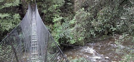 swingbridge on Leslie Karamea Track, Kahurangi National Park