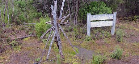 This is the rather obscure turnoff from the southern circuit track.   Tolson River hunter's campsite, Southern Circuit, Rakiura National Park