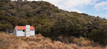 The hut is out in the tussock but there is plenty of dry firewood around. | Ministry of Works Historic Hut, Kahurangi National Park