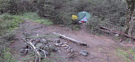You can put a small tent up over there. | Point 744 campsite, Anotoki River, Kahurangi National Park