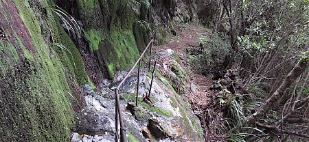 In the 1890s blokes smashed a pack trail through the granite. |  Near Helicopter Flat Hut, Wangapeka Track, Kahurangi National Park