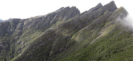 The Dragons Teeth Upper Route charges across there.  Not for me. | Kahurangi National Park