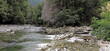 Kiwi Stream meets the Wangapeka River. Swingbridge in the distance. | Wangapeka Track, Kahurangi National Park