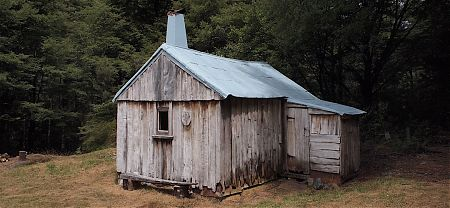 Built from a single red beech tree in 1935, allegedly. | Cecil King Hut, Wangapeka Track, Kahurangi National Park