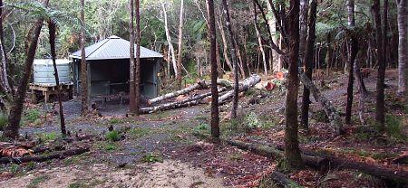 North Arm camping area, Rakiura Track, Stewart Island