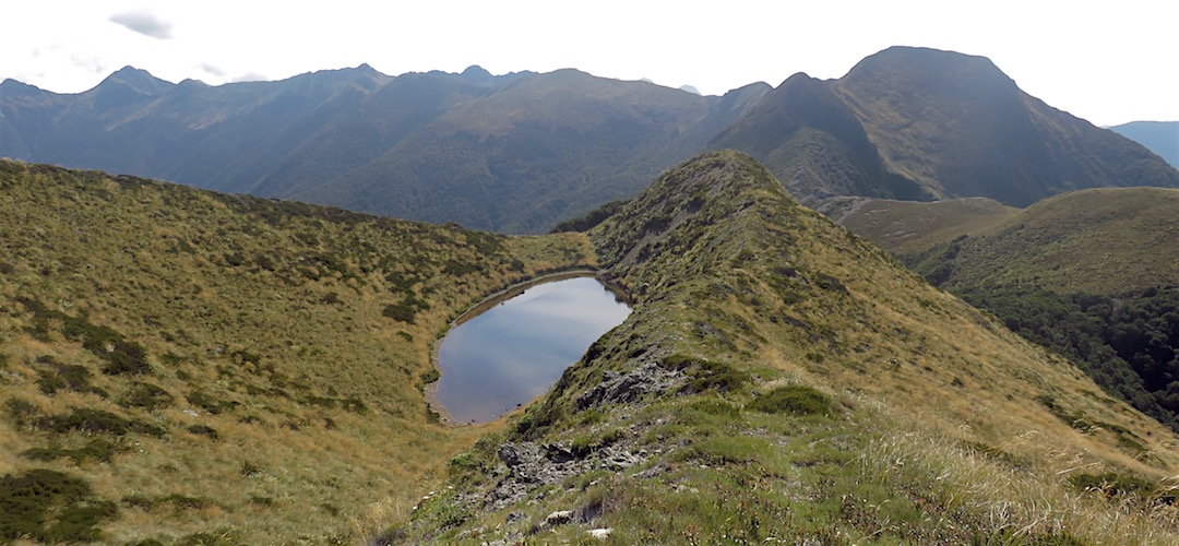 That's Nugget Knob on the left and the ridge that's just been travelled. | Matiri Ridge Tarn campsite