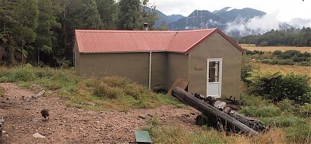 The hut weka. The original NZFS S70 hut was extended and renovated.   Mokihinui Forks Hut, Mohikinui Ecological Area