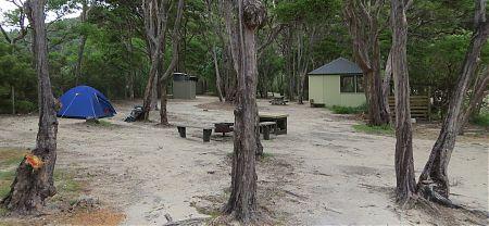 Bark Bay campsite, Coastal Track, Abel Tasman National Park