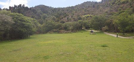 Tinline campsite, Coastal Track, Abel Tasman National Park