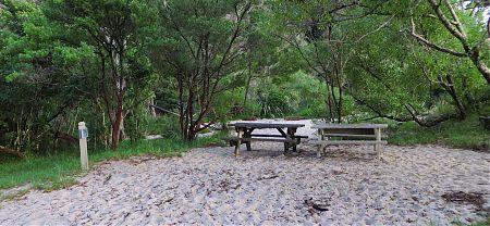 Tonga Quarry campsite, Coastal Track, Abel Tasman National Park