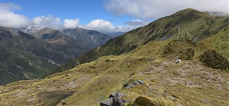 Toaroha Bivvy and Saddle looking to Bluff Hut. |  Frew/Toaroha Saddles, Westland