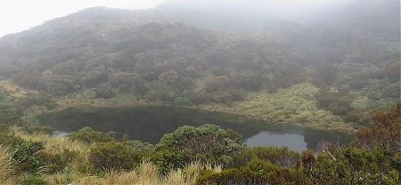 Tarn at Crystal Bivvy in the fog/low cloud. |  Frew/Toaroha Saddles, Westland