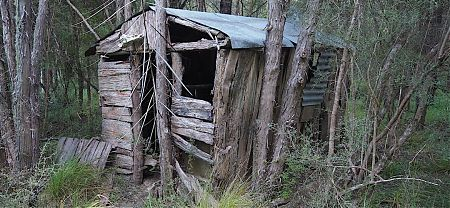 The old hut is no longer habitable. | Lake Alexander historic Hut, Ferny Gair Conservation Area, Marlborough
