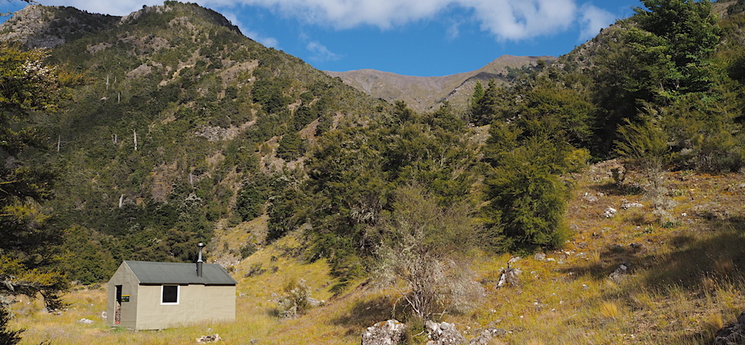 That's almost Ferny Gair, 1670m, in the background.   Penk Hut, Ferny Gair Conservation Area, Marlborough