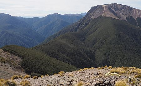 Mt Rintoul, 1731 m, from Purple Top. The Rintoul Hut is a speck.   Mt Richmond Forest Park circuit, April 2018