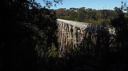 The Percy Burn viaduct built in the 1920s is a major engineering achievement. 35 m high. | South Coast Track, South Fiordland
