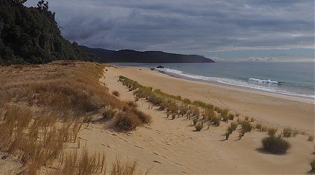 Deer tracks down on Murray Beach. On the way to Christmas Village Hut.   North West Circuit, Stewart Island/Rakiura