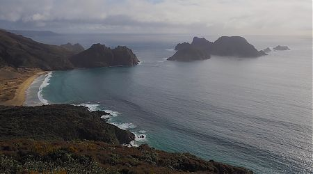 The Rugged Islands and East Ruggedy Beach is one of my favourite ever views.   |  North West Circuit, Stewart Island/Rakiura