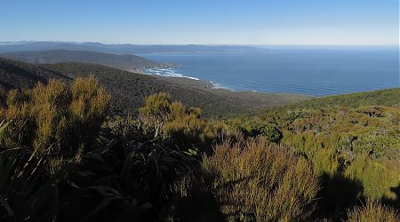 Shortly after leaving Hellfire Hut you can see all the way to where you will be the next day.  |  North west Circuit, Stewart Island/Rakiura