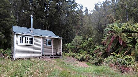 Built in 1905, but since renovated. | Blue River Hut, Haast Paringa Cattle Trail