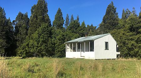 Down on the river flats. | Coppermine Creek Hut, Haast Paringa Cattle Trail