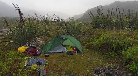Not much room in my tent. Sandflies not shown.   Callery Creek campsite, South Westland
