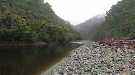 Gorge River after the flooding. Getting back to non-flood level.   Gorge River, South Westland