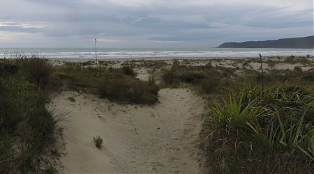 Back to full gloom. Getting down to Big Bay Beach. | Big Bay, South Westland