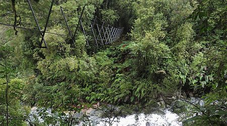 One of a few three-wire bridges on the Demon Trail.   Hollyford track, Fiordland National Park