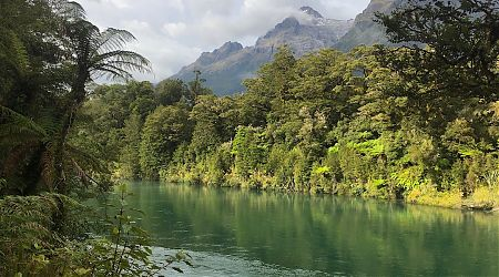 The substantial Hollyford River, with the steep Darran Range behind. | Hollyford track, Fiordland National Park