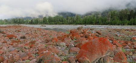 Taramakau River, Harper Pass route , West Coast