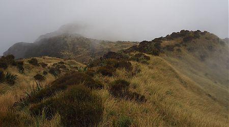 Near Newton Range Bivvy, Newton Range.   Arahura/Styx blog, December 2019
