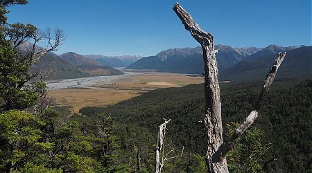 View up the Waimakariri River coming down from Binser Saddle. | Day 6 Arthurs Pass tramp, February 2021
