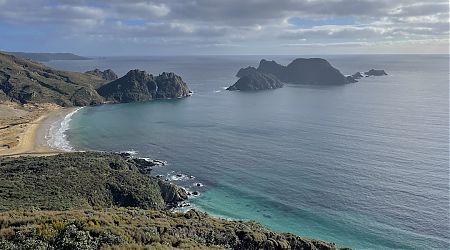 East Ruggedy Beach and Rugged Islands. | Northwest Circuit, Rakiura National Park