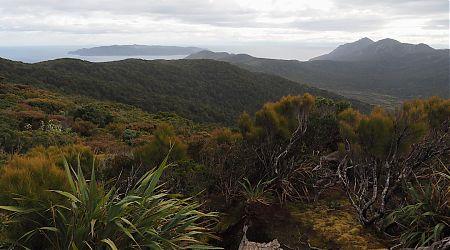 Codfish Island and Ruggedy Range from near Hellfire Pass Hut. | Northwest Circuit, Rakiura National Park