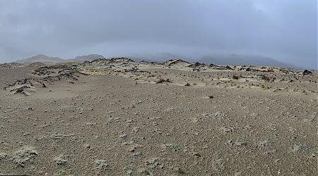 The sand dunes near Mason Bay Hut  are like images from Mars.  | Northwest Circuit, Rakiura National Park