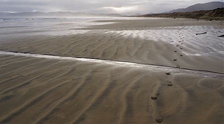 Mason Bay beach. | Northwest Circuit, Rakiura National Park