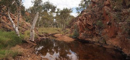 Spring Gap on Larapinta Trail, Central Australia