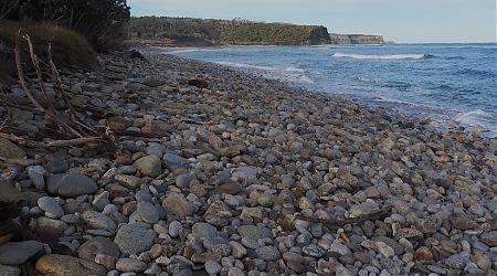 Down at the beach near Waitutu Hut.    South Coast Track, Fiordland National Park
