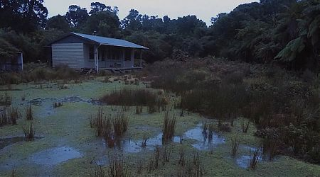 Not much happening on a wet day at Waitutu Hut.    South Coast Track, Fiordland National Park