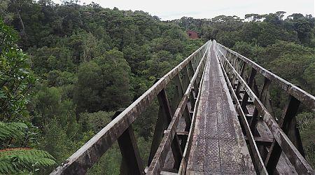 Percy Burn Viaduct and Hut.    South Coast Track, Fiordland National Park